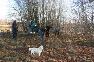 Tartu Ülikooli arheoloogid kontrollimas arvatava Nulga küla ohvrikivi ümbrust.